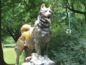 and the statue of Balto, the sled dog who saved Alaska's children from a diphtheria epidemic and inspired the yearly Iditarod Race.