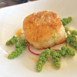 Vanilla and rose scented Montauk scallop with shaved radish, baby grape cluster salad and chile oil.
