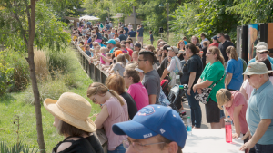 A crowd during Seneca Park Zoo's Elephant Day, which happens in August. Courtesy of Austin Quinlan.