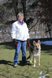 Cora and Bonnie — Victor resident Bonnie Kelly takes Cora on her daily 2-mile walk as part of her early training. Kelly raised Cora's mother, Rasha, a few years ago, Kelly has raised 13 Guiding Eyes for the Blind dogs so far.Photo of MelodyBurri.