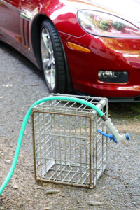 Milk Crate hose and dirty car