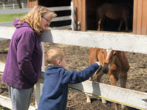 Grandson Gavin Yelle bonds with Ellie Moro at Hillrose Farm.