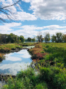 Sandy Bottom Park & Nature Trails, Honeoye. This hidden gem is located on Country Road 36 off Route 20A on the north end of Honeoye Lake.