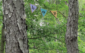 Banners at Birdsong Fairy Trail in Mendon Ponds Park.
