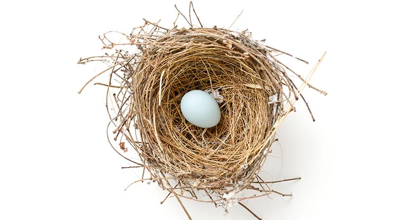 Small nest egg