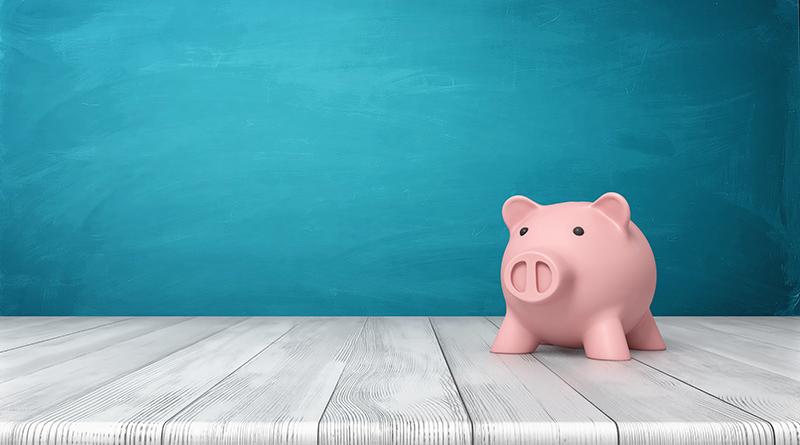 Loans pig